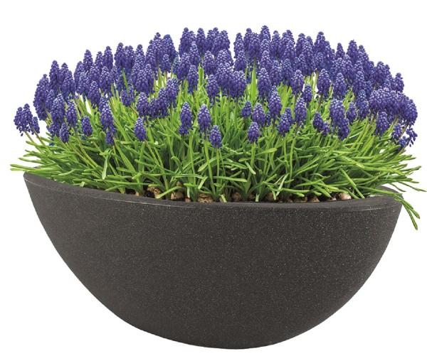 Pflanzschale Blumenschale Blumentopf Pflanzentopf 20x52x23 cm frostsicher Neu